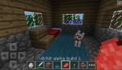 Minecraft Pocket Wolf
