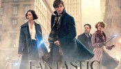 OFFICIAL DEBUT - Fantastic Beasts and Where to Find Them - Main Titles - James Newton Howard