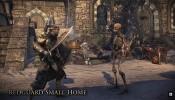 The Elder Scrolls Online: Homestead First Look