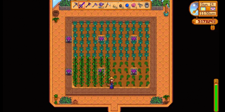 'Stardew Valley' Cheats, Tips & Tricks: The Importance Of The Seed Maker Using Ancient Fruit & Making Huge Profit From It