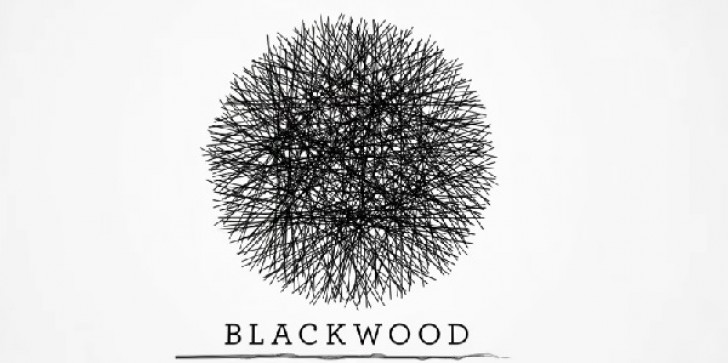 'Blackwood Crossing': Available On PS4, Xbox One & PC; Release Date On April 4 Brings Power Drama