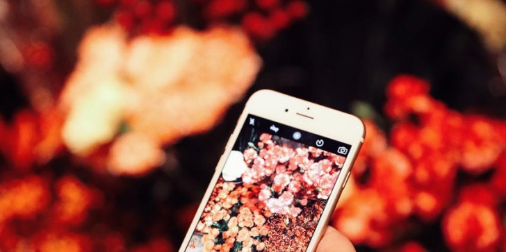 Top 3 Android Games for Flower Lovers
